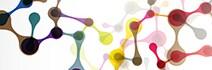 Histone H3 ChIP-grade antibodies