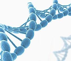 Epigenetic mechanisms webinar-