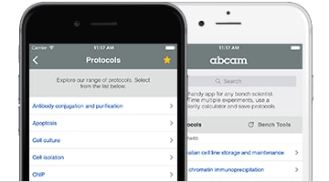 Protocols iPhone and iPad