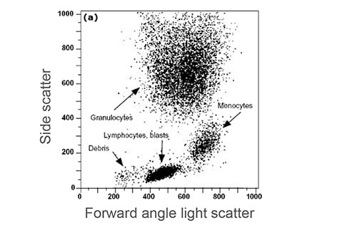 Flow cytometry dot plot of FS vs SS