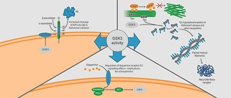 Role of GSK3 in Alzheimer