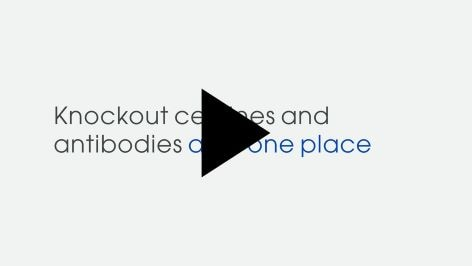 Access quality knockout cell lines and antibodies in one place. Confidence. Delivered