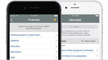 Protocols iPhone and iPad