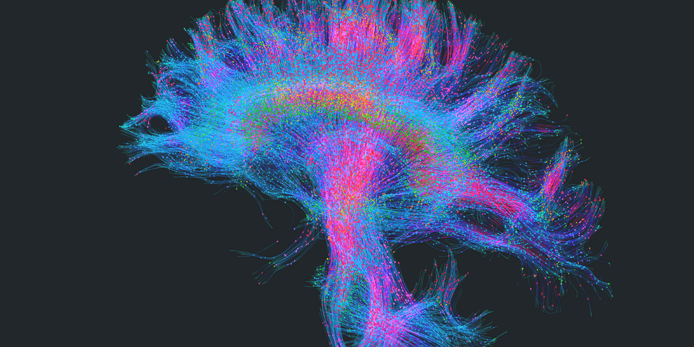Spotlight on Neuroscience: explore new ways to light up your research